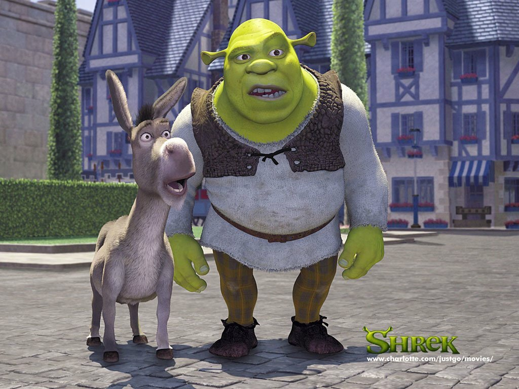 FIG9_shrek e ciuchino 1